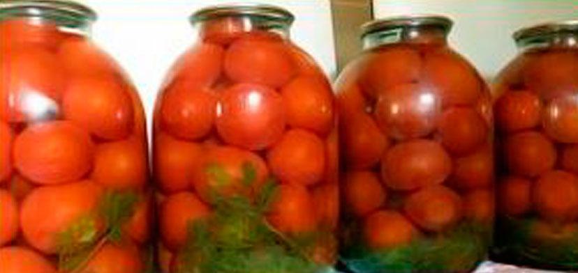 pomidori_s_morkovnoi_botvoi
