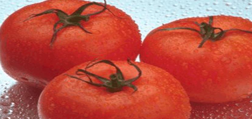 salati_iz_pomidorov